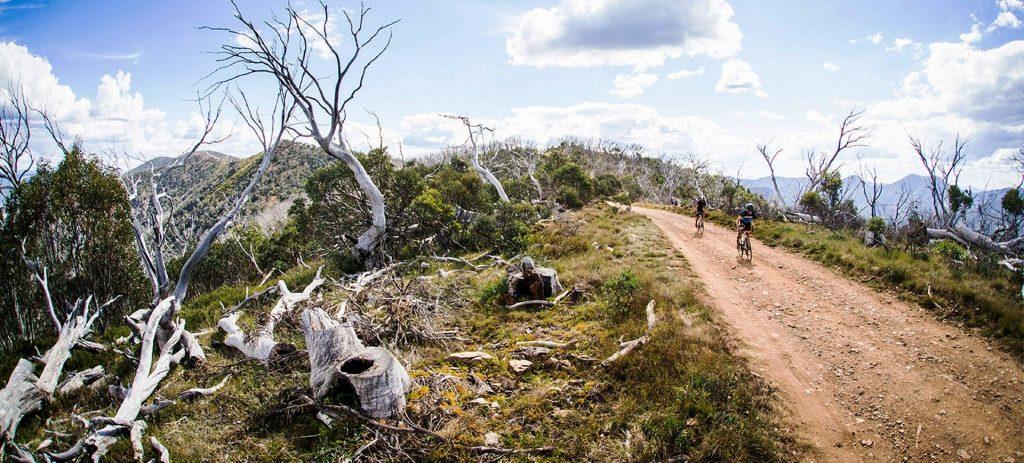 Le migliori bici Gravel per pedalare su ogni terreno